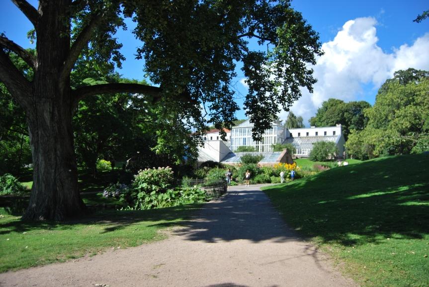 L'Orto Botanico di Oslo: nel cuore della capitale della Norvegia un cuore verdepulsante.