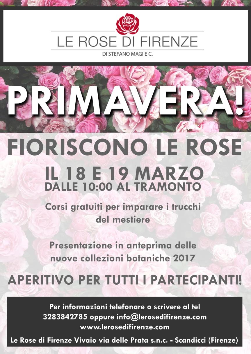 locandina-rose-firenze